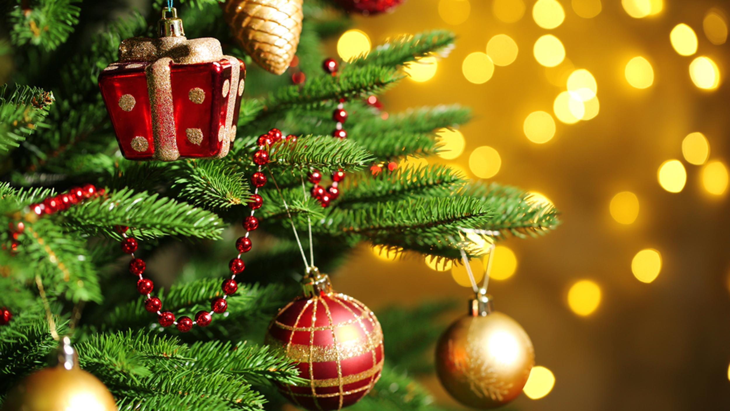 Стало известно, сколько украинцы будут отдыхать на новогодних праздниках. Новости Украины