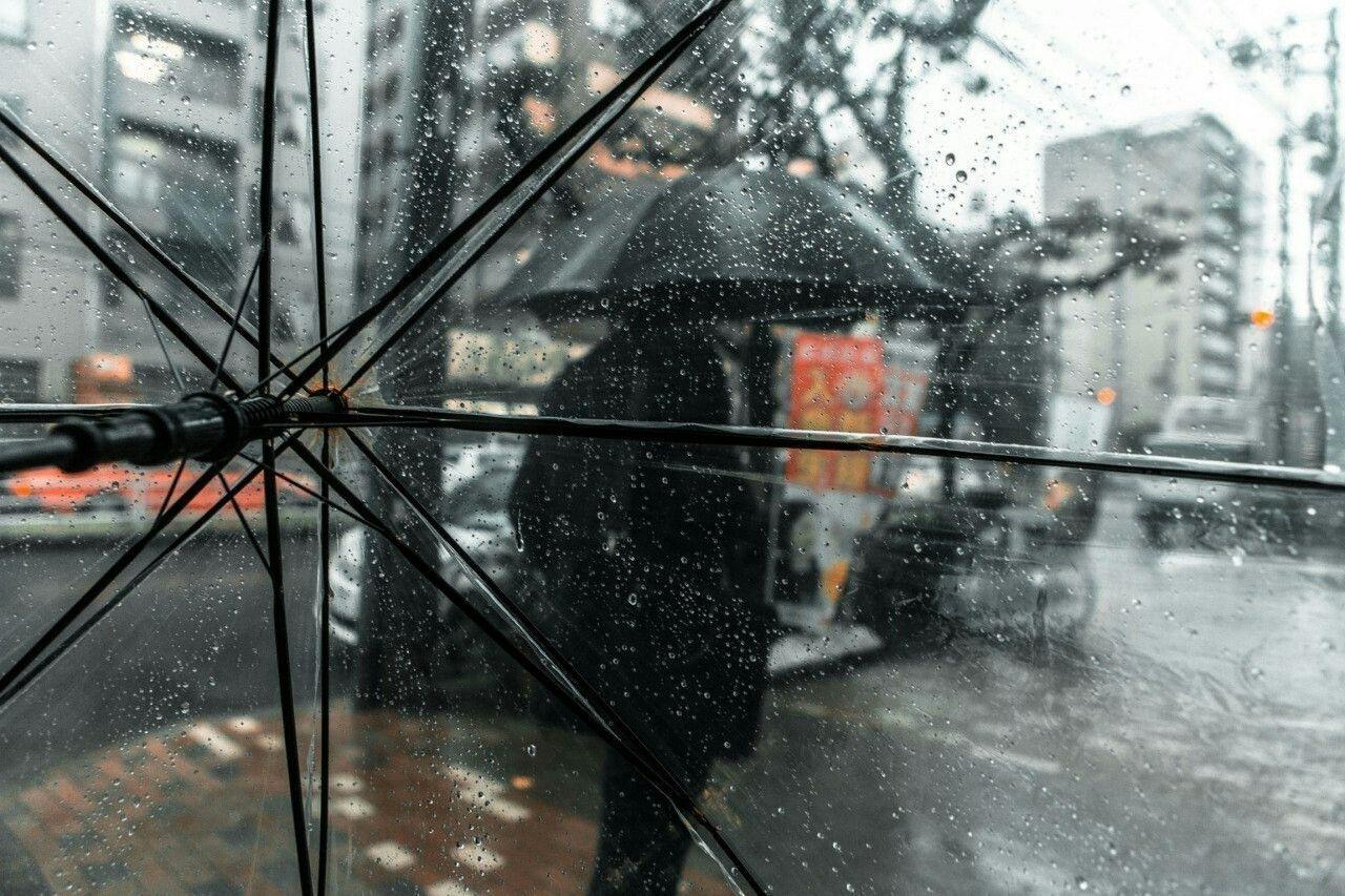 Доставай зонт и теплую куртку: в Днепр идут затяжные дожди. Новости Днепра
