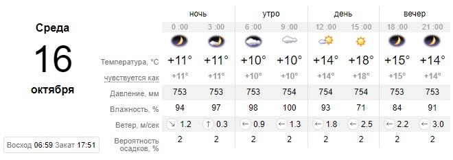 Синоптики рассказали, какой сегодня будет погода в Днепре. Новости Днепра