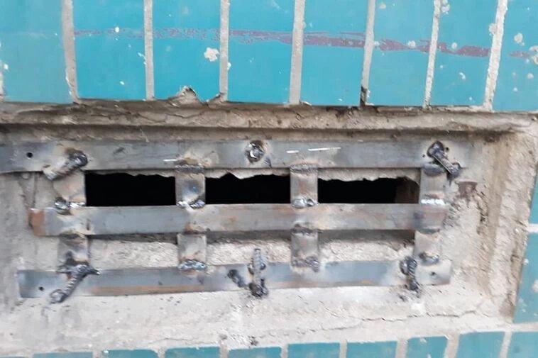 В Днепре нескольких котов заживо замуровали в подвале. Новости Днепра