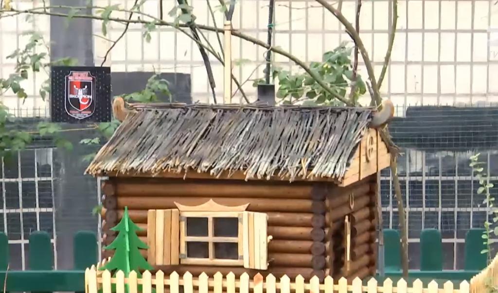 Минутка доброты: в Днепре появился «Кошкин дом». Новости Днепра