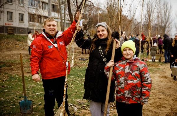 В Днепре на Левобережном высадили березовый сад. Новости Днепра