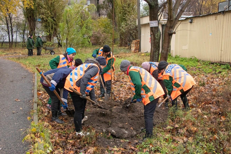 Озеленение Днепра: где и что уже сделано. Новости Днепра