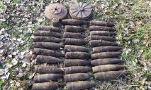 «Выкорчевывал деревья»: мужчина во время работы наткнулся на боеприпасы