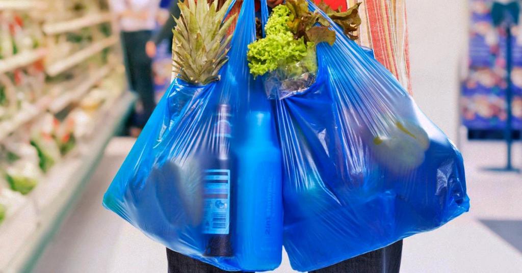 В Украине могут запретить пластиковые пакеты: подробности. Новости Украины
