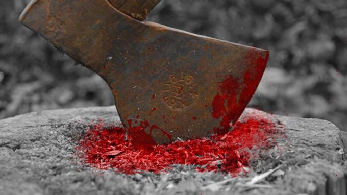 Женщина забила до смерти соседа топором, отмыла орудие убийства и вернула на место. Новости Днепра