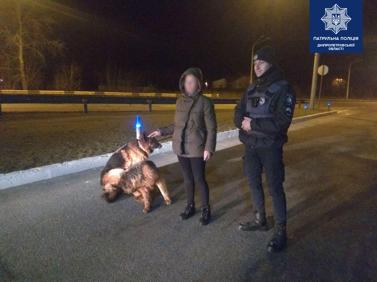 У Дніпрі поліцейські повернули додому вівчарок-втікачів. Новини Дніпра