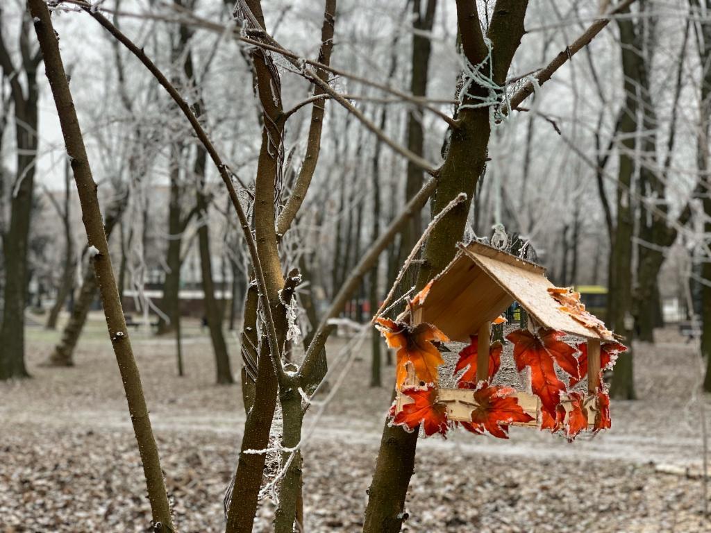 В парке Днепра появятся кормушки, созданные по эскизам школьников. Новости Днепра