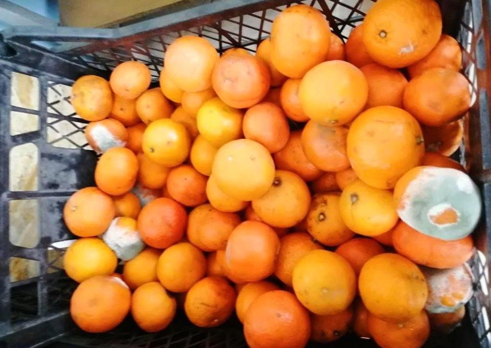 «Отдел «Гнилое и пропавшее»: в супермаркете Днепра продают испорченные продукты. Новости Днепра