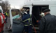 Микроавтобус влетел в грузовик: водителя вырезали спасатели