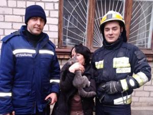 Спасатели освободили из ловушки кота. Новости Днепра