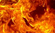 На Днепропетровщине спасатели тушили масштабный пожар