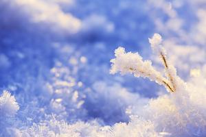 Когда выпадет снег. Новости Днепра