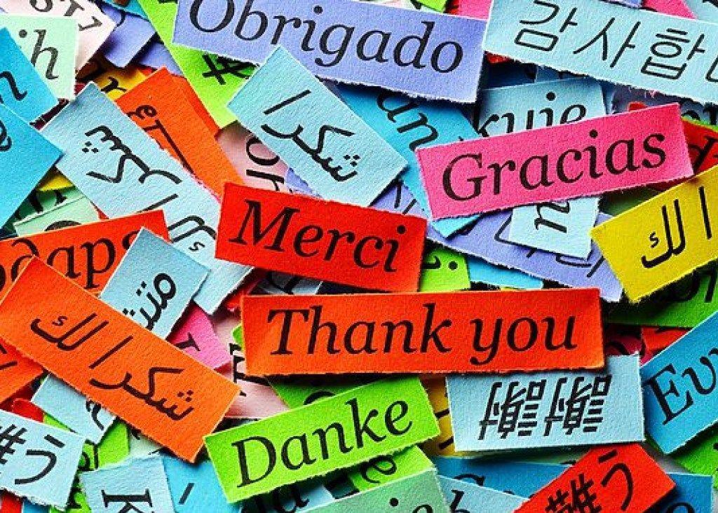 Не забудьте сказать «спасибо»: какой сегодня праздник