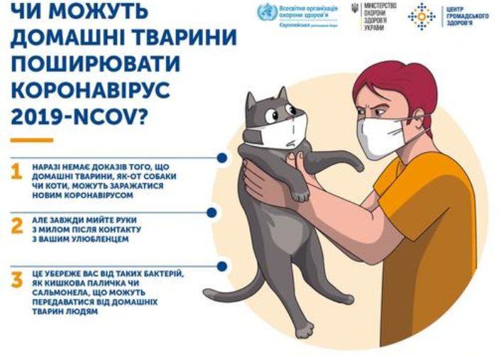 Развенчиваем мифы про коронавирус: заявления врачей. Новости Днепра