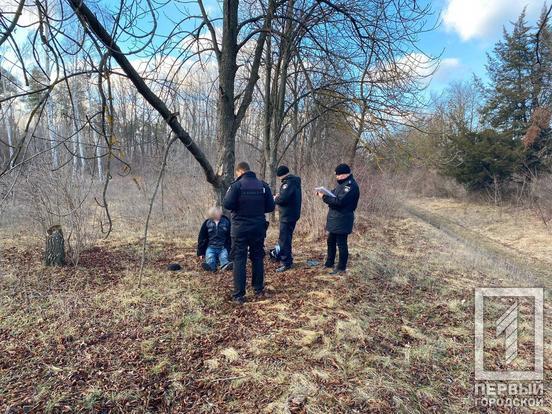 В Кривом Роге в парке повесился мужчина. Новости Днепра
