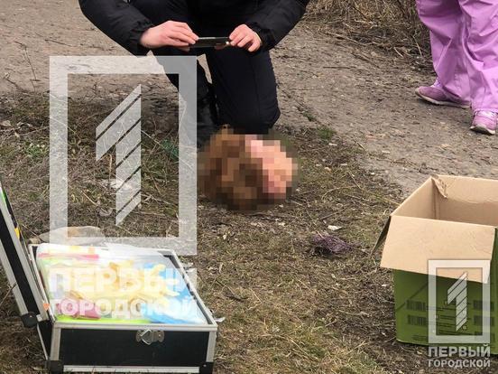 В Кривом Роге обнаружили голову расчлененной женщины. Новости Днепра