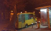 ЧП: в Днепре дерево упало на маршрутку с пассажирами
