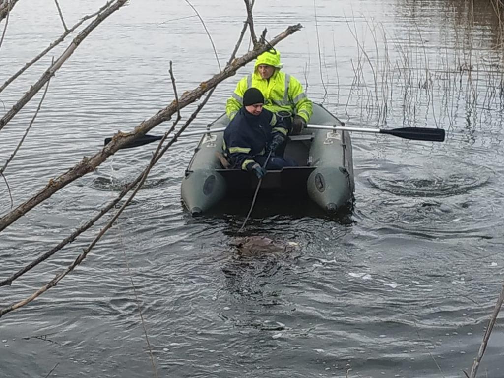 Обнаружили тело: в реке утонул мужчина. Новости Днепра