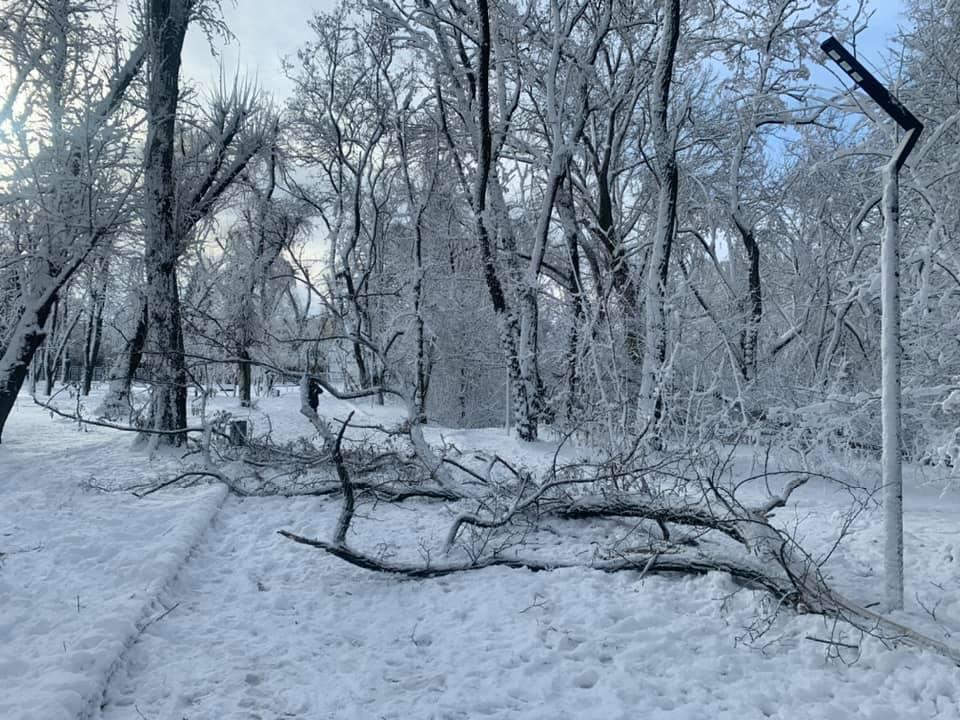 «Красота и непогода рядом»: волонтеров приглашают на уборку парка в Днепре. Новости Днепра
