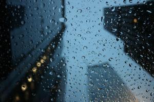 Сегодня в Днепре - дождь. Новости Днепра