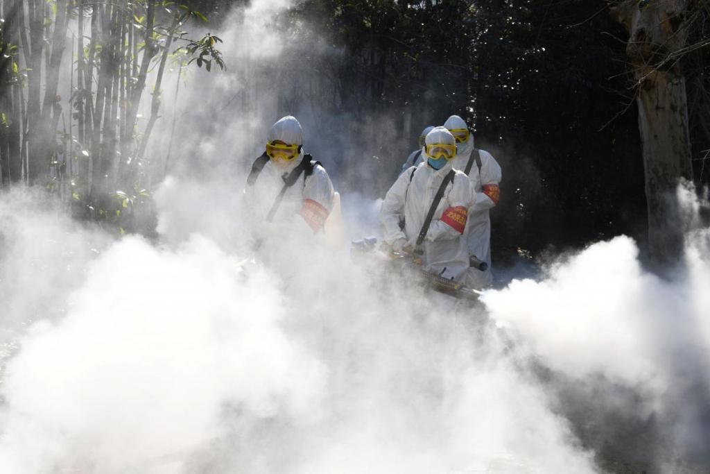 Китайский коронавирус: в мире заражены 75 тысяч человек. Новости мира