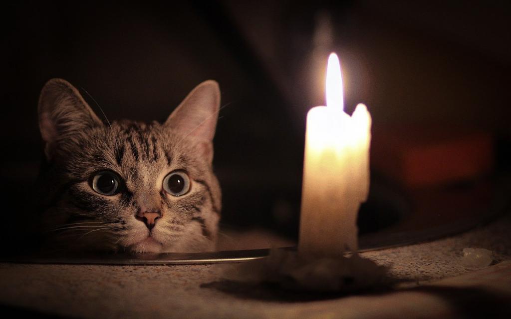 Кто из жителей Днепра завтра останется без света: адреса. Новости Днепра