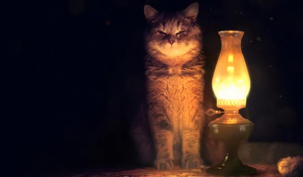 Грядет отключение: где и когда в Днепре не будет света. Новости Днепра