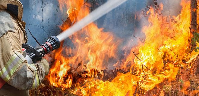 Пожар в парке: загорелся детский аттракцион. Новости Днепра