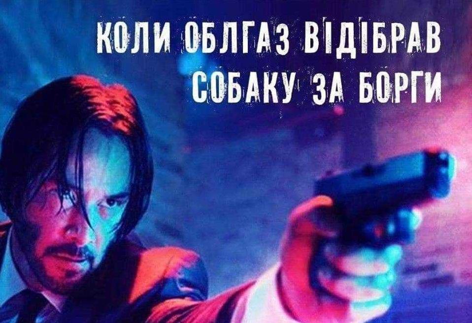 Соцсети взорвались «фотожабами» из-за высказывания нардепа Брагара о продаже собаки для оплаты газа. Новости Украины