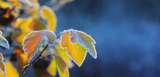 Новости Днепра про Солнце днепряне будут видеть редко: погода на 14-е февраля