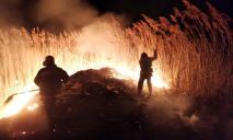 На Днепропетровщине сгорело два гектара сухой травы и камыша