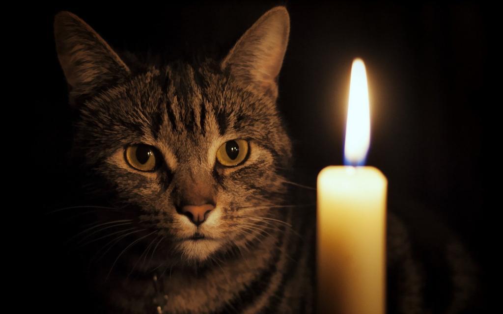 В Днепре грядет отключение: кто завтра останется без света. Новости Днепра