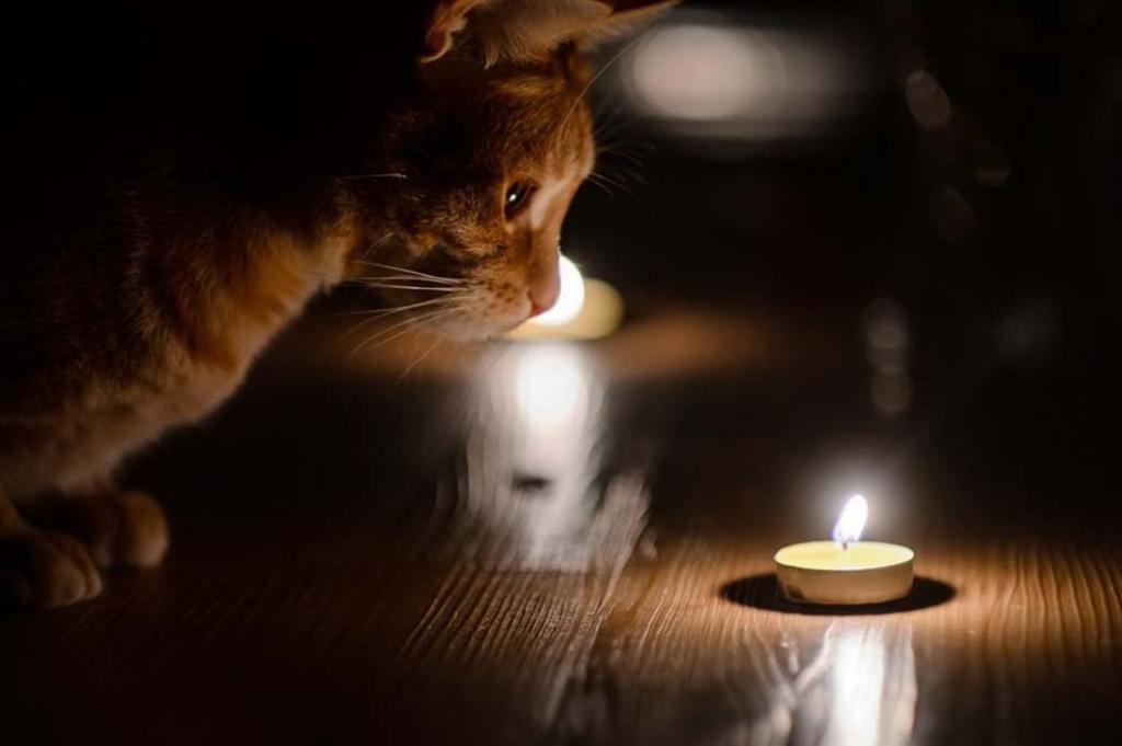 Грядет отключение: кто в Днепре останется без света. Новости Днепра