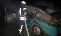 «Мгновенно вспыхнула »: не далеко от базы отдыха загорелась машина