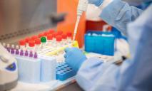 Минздрав: впервые количество ПЦР-тестов в Украине превысило 10 тысяч в сутки