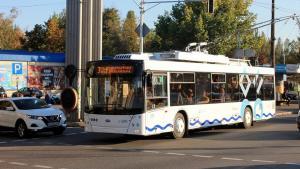 Женщину с 11-летним ребенком не пускали в троллейбус, но взяли после скандала. Новости Днепра