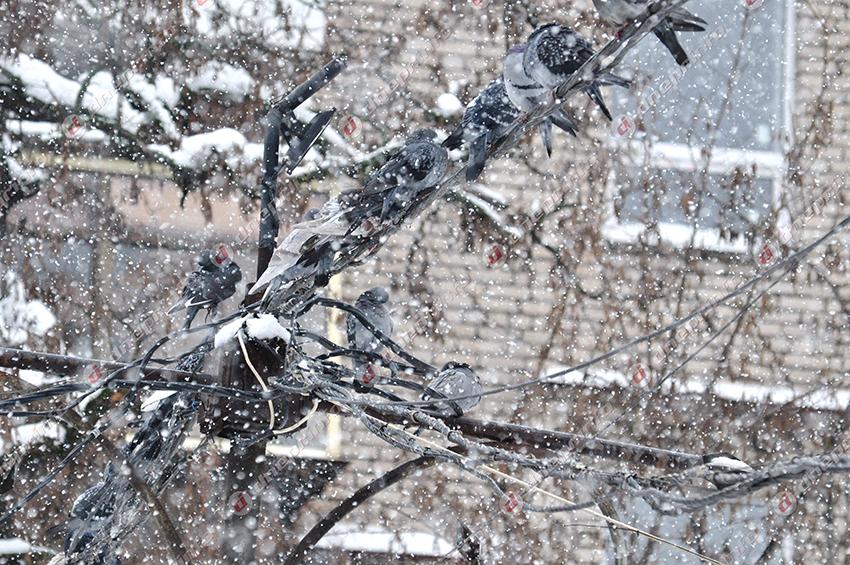 Днепр готовится к зиме. Новости Днепра