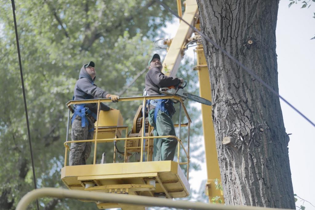 В Днепре удаляют аварийные деревья, мешающие жизнедеятельности города и подвергающие жителей опасности. Новости Днепра