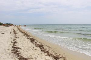Летом этого года на черноморских пляжах нашей страны будут отдыхать чуть ли не стоя. Новости Укарины