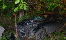 ДТП в Днепре: авто влетело во двор дома