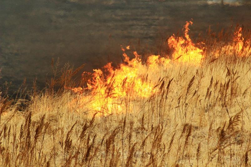 В Днепре есть риск возникновения массовых пожаров. Новости Днепра