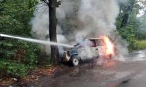 Серьезный пожар: авто охватило огнем