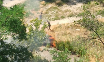 В Днепре дети ликвидировали пожар: подробности