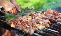 Индекс шашлыка растет: сколько сейчас стоит организовать пикник