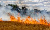 Днепрян предупредили об опасности: массово горят леса