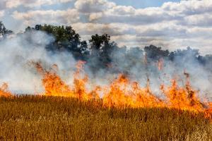 Высокая пожарная опасность. Новости Днепра