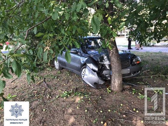 Водитель авто потерял управление и врезался в дерево. Новости Днепра