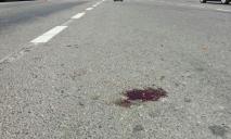 «Асфальт в крови»: женщина на мопеде влетела в фуру
