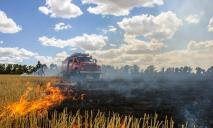 Серьезный пожар на поле: горела стерня
